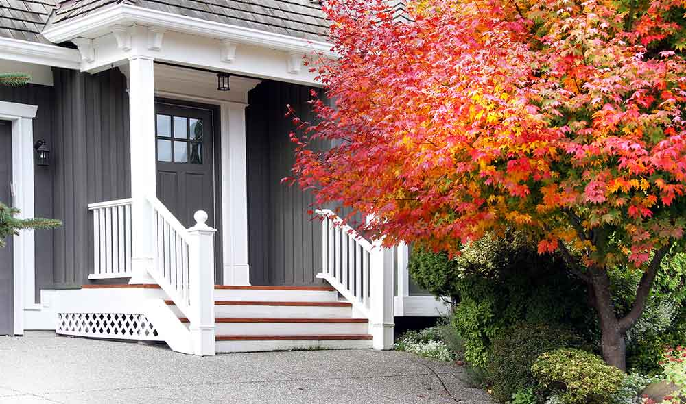 Front of house with new home siding and fall leaves