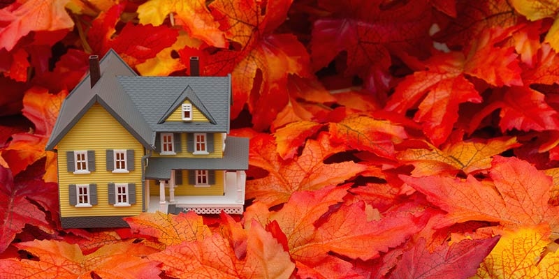miniature standard town home surrounded by fall-colored leaves