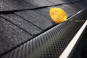 Gutter services in Wood Dale